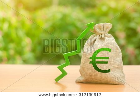 Money Bag With Euro Symbol And Green Up Arrow. Increase Profits And Wealth. Growth Of Wages. Favorab