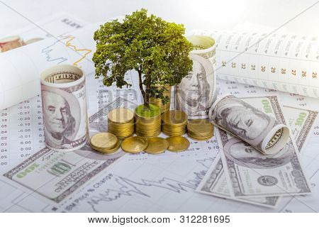 poster of The tree is growing both on the progress of money and financial reports, along with financial accounts, business, investment on the investor's table. Front investment concept