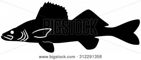 Walleye Fish Black Vector Silhouette Clip Art Image