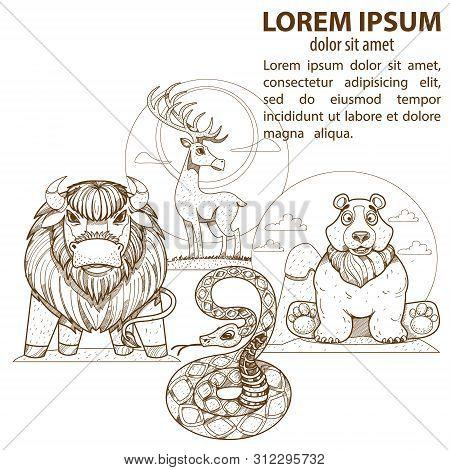Wild Animals. Deer, Bear, Snake Buffalo Illustrations For Coloring