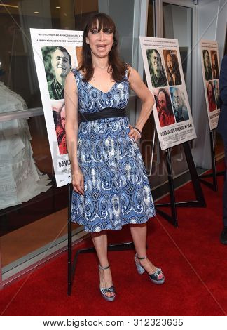 LOS ANGELES - JUL 18:  Illeana Douglas arrives for the 'David Crosby: Remember My Name' Los Angeles Premiere on July 18, 2019 in Hollywood, CA