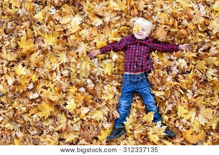Blond Boy In A Plaid Shirt Lies In Yellow Autumn Leaves. Top View. Autumn Concept