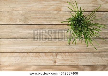 Pot Of Greens On A Light Wooden Table. Directly Above.