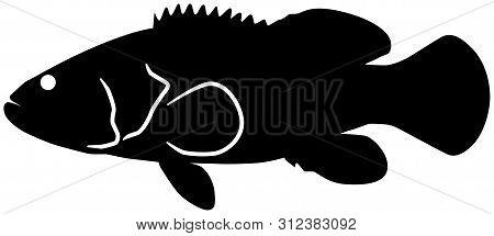 Goliath Grouper Fish Black Vector Silhouette Clip Art Image