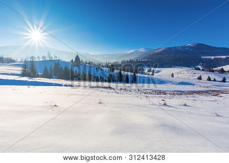 Wonderful Countryside In Mountains. Beautiful Winter Landscape On A Sunny Day. Trees On Snow Covered