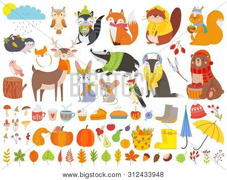 Autumn Forest Animals. Fall Squirrel, Funny Bear And Cute Autumnal Fox. Fallen Leaves, Deer Bear Rac