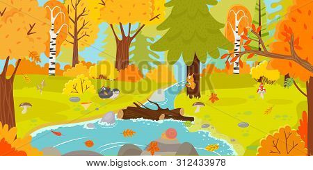 Autumn Forest. Autumnal Nature Landscape, Yellow Forests Trees And Woodland Fall Leaves. October Fol