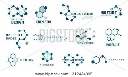 Hexagonal Molecule Badge. Molecular Structure Logo, Molecular Grids And Chemistry Hexagon Molecules