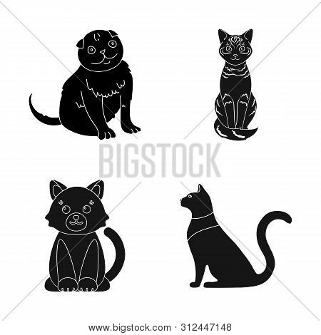 Bitmap Design Of Pet And Sphynx Icon. Collection Of Pet And Fun Stock Bitmap Illustration.