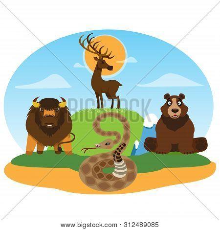 Wild Animals. Deer, Bear Snake Buffalo Reserve