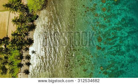Tropical Landscape With Coconut Trees And Turquoise Lagoon, View From Above. Seascape With Palm Tree
