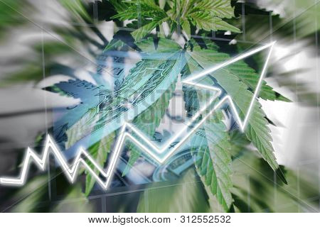 Cannabis Industry Profit Margin High Quality Stock Photo