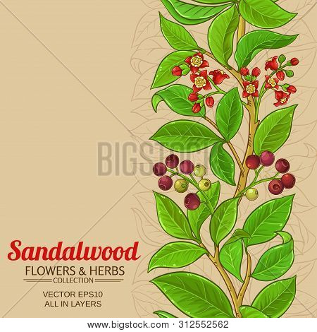 Sandalwood Branches Vector Pattern On Color Background