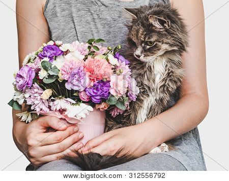 Cute, Sweet Kitten, Bright Bouquet And Woman