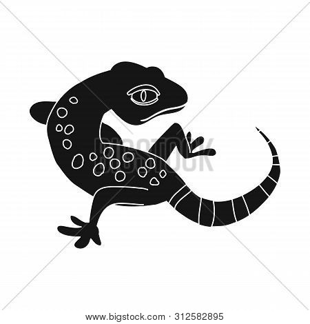 Vector Illustration Of Gecko And Lizard Symbol. Set Of Gecko And Cute Vector Icon For Stock.
