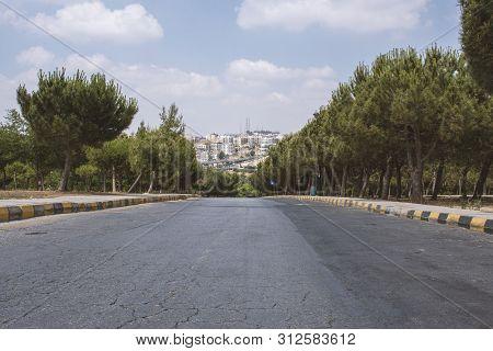 Wonderful Trees With Cloudy Sky In King Hussain Gardens In Amman In Jordan - View Of Amman City