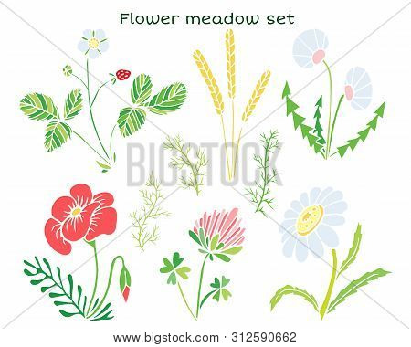 Vector Flowers Set. Naive Childish Illustration With A Flower Glade.