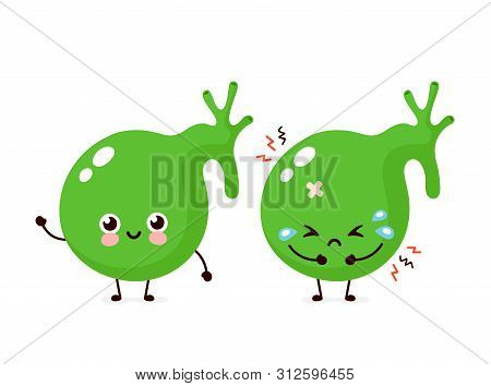 Sad Unhealthy Sick And Happy Smiling Healthy Strong Human Gallbladder Organ. Vector Modern Style Car