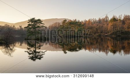 poster of Stunning landscape image of Tarn Hows in Lake District during beautiful Autumn Fall evening sunset with vibrant colours and still waters
