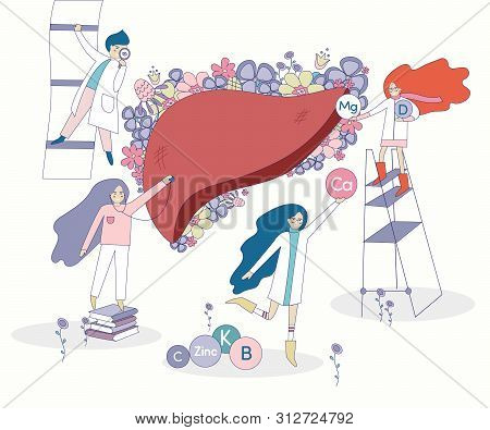 Healthy Liver Vector With Flowers On The Background. Four Doctors And Nurses Looking For The Right V