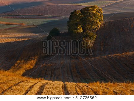 Autumn Morning On Moravian Fields With Forest And Beautiful Sunrise Sunlight. Golden Hour With Light