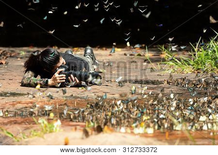 Professional Woman Photographer Taking Butterfly In The Green Jungle Rain Forest Nature. Travel And