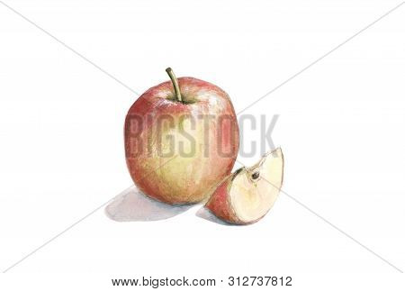 Red Apple With A Slice, Lobule, Watercolor Illustration