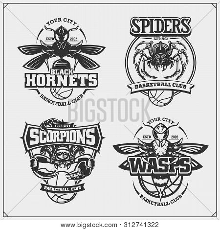 Basketball Badges, Labels And Design Elements. Sport Club Emblems With Scorpion, Wasp, Hornet And Sp