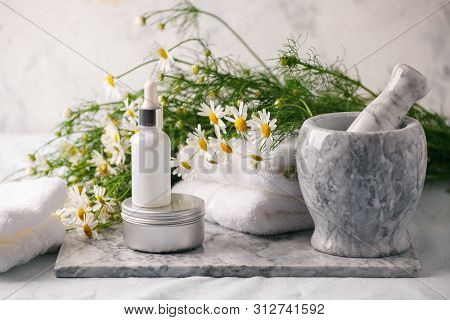 Concept Of Flowers And Organic Cosmetic. Essential Camomile Oil In Glass Bottle With Fresh Chamomile