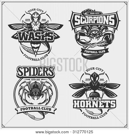 Hornets_scorp3.eps