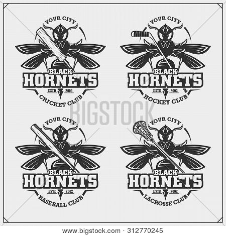 Cricket, Baseball, Lacrosse And Hockey Logos And Labels. Sport Club Emblems With Hornet. Print Desig