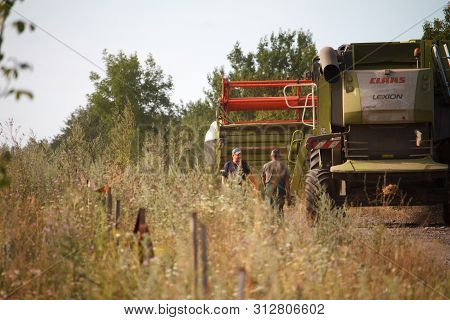Combine Harvester Rides Along Wheat Field For Harvesting