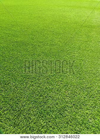 Green Grass Field Pattern, Grass Background Photo