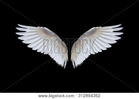 White Angel Wings Isolated On A Black Background.clipping Path