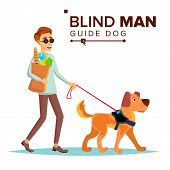 Blind Man . Person With Pet Dog Companion. Blind Person In Dark Glasses And Guide Dog Walking. Isolated Cartoon Illustration poster