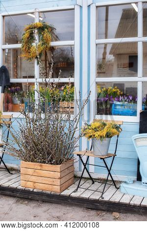 Flowers For Sale At Flower Shop. Wooden Porch Of House With Willow Branches And Flowers Yellow Mimos