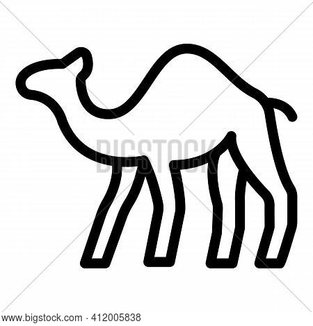 Riding Camel Icon. Outline Riding Camel Vector Icon For Web Design Isolated On White Background