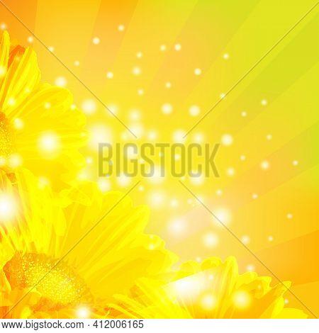 Orange Gerber With Sunburst And Blur, Vector Illustration