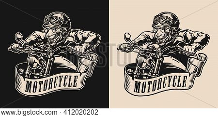 Vintage Monochrome Motorcycle Label With Angry Wolf Racer In Moto Helmet Goggles Jacket And Gloves R