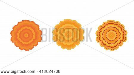 Bundle Of Elegant Yellow Indian Marigold Vector Flowers. Gorgeous Orange Flower With Lush Petals. Bo