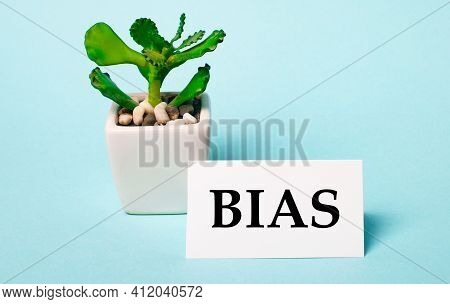 On A Light Blue Background - A Potted Plant And A White Card With The Inscription Bias