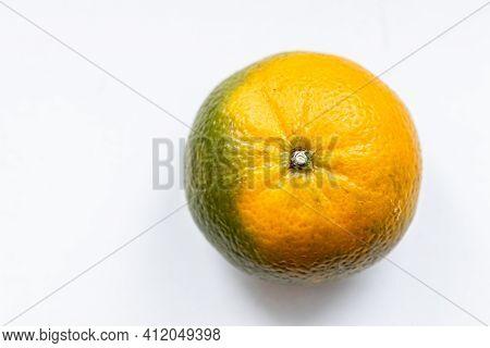 One Unripe Orange Green Matte Tangerine On White Background. Top View. Close-up, Macro. Right Locati