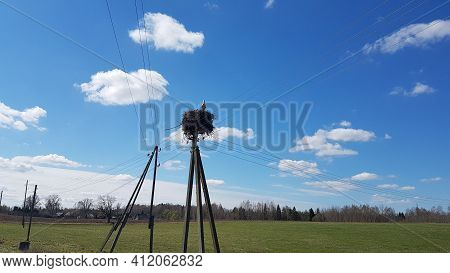 Rural Landscape With Electric Poles And A Stork\'s Nest With A Stork On It. Summer Rural Landscape