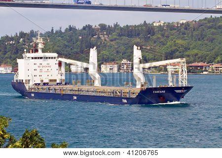 Cargo ship sailing along the shore