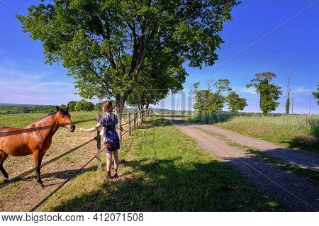 Young Woman Is Feeding A Horse At A Farm In France