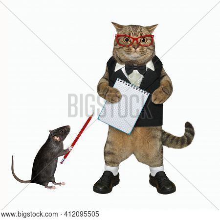 A Beige Cat In A Black Suit And Glasses Is Standing With A Blank Notepad. White Background. Isolated