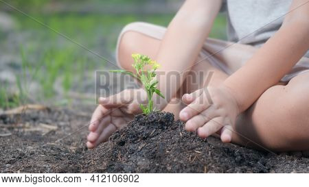 Little Kid Hand Planting Seedlings Growing Tree In Soil On Garden. Child Plant Young Tree By Hand Fo