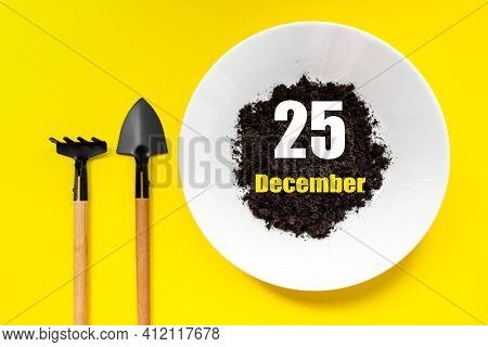 December 25th. Day 25 Of Month, Calendar Date. White Plate Of Soil With A Small Spatula And Rake On