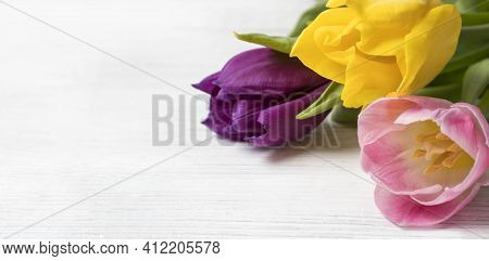 A Festive Floral Banner With A Place For Text. A Bouquet Of Bright Multicolored Yellow, Pink And Pur