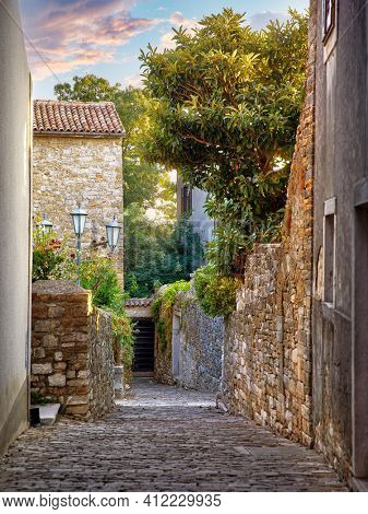 Rovinj Croatia. Vintage stone street with old house street lamp tegular roof and green tree. Picturesque landscape old town in Europe.